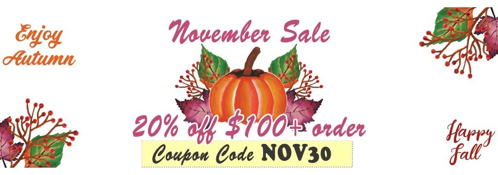 20% off orders over $100. November only!