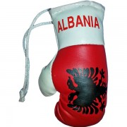 Mini Boxing Gloves - Albania