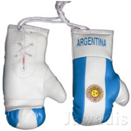 Mini Boxing Gloves - Argentina