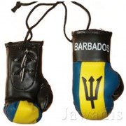 Mini Boxing Gloves - Barbados