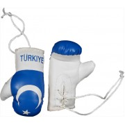 Mini Boxing Gloves - Turkiya - Blue