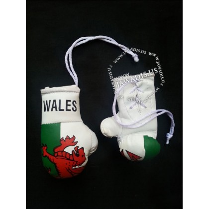 Mini Boxing Gloves - Wales