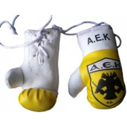 Mini Boxing Gloves - A.E.K.