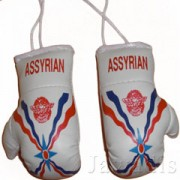 Mini Boxing Gloves - Assyrian
