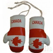 Mini Boxing Gloves - Canada