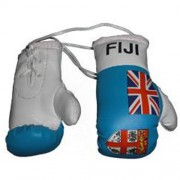 Mini Boxing Gloves - Fiji