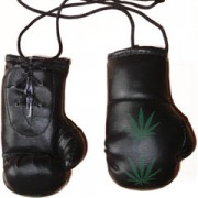 Mini Boxing Gloves - Green Leaf