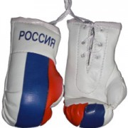 Mini Boxing Gloves - Russia POCCNR