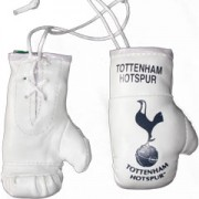 Mini Boxing Gloves - Tottenham Hotspur